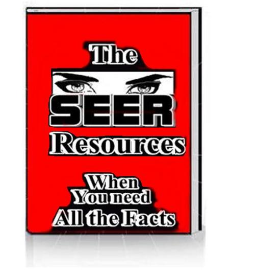 Product picture The Seer Resources
